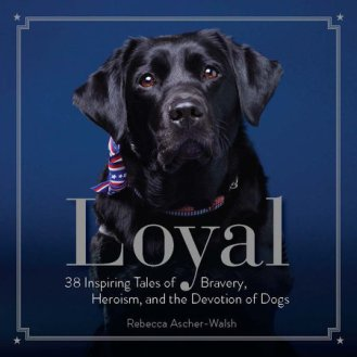Loyal book cover