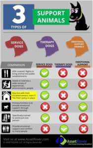 A chart comparing emotional support animals, assistance animals and therapy animals, their attributes and rights under the law.