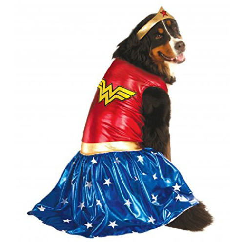 Big Dog Wonder Woman Costume