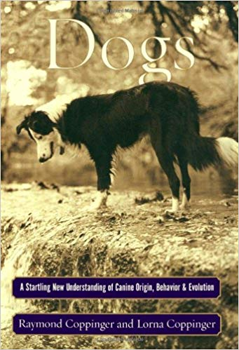 Dogs: A Startling New Understanding of Canine Origin, Behavior & Evolution book cover
