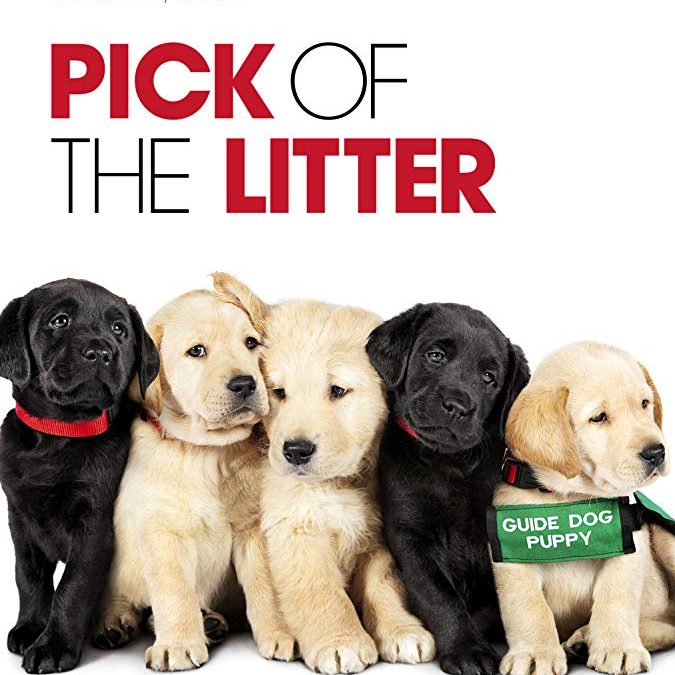 Pick of the Litter Captures Guide Dog Journey